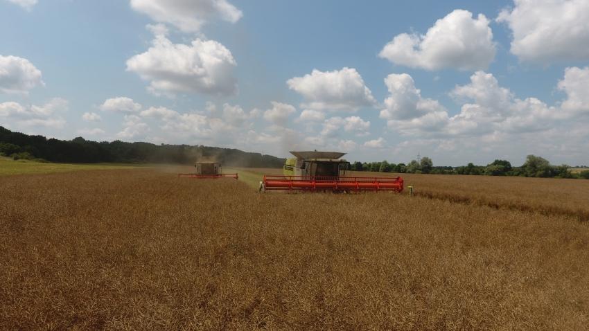 Успешното земеделие на България - 18
